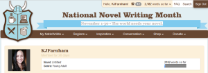 nanowrimo dashboard