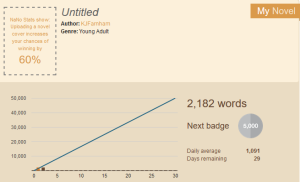 nanowrimo progress